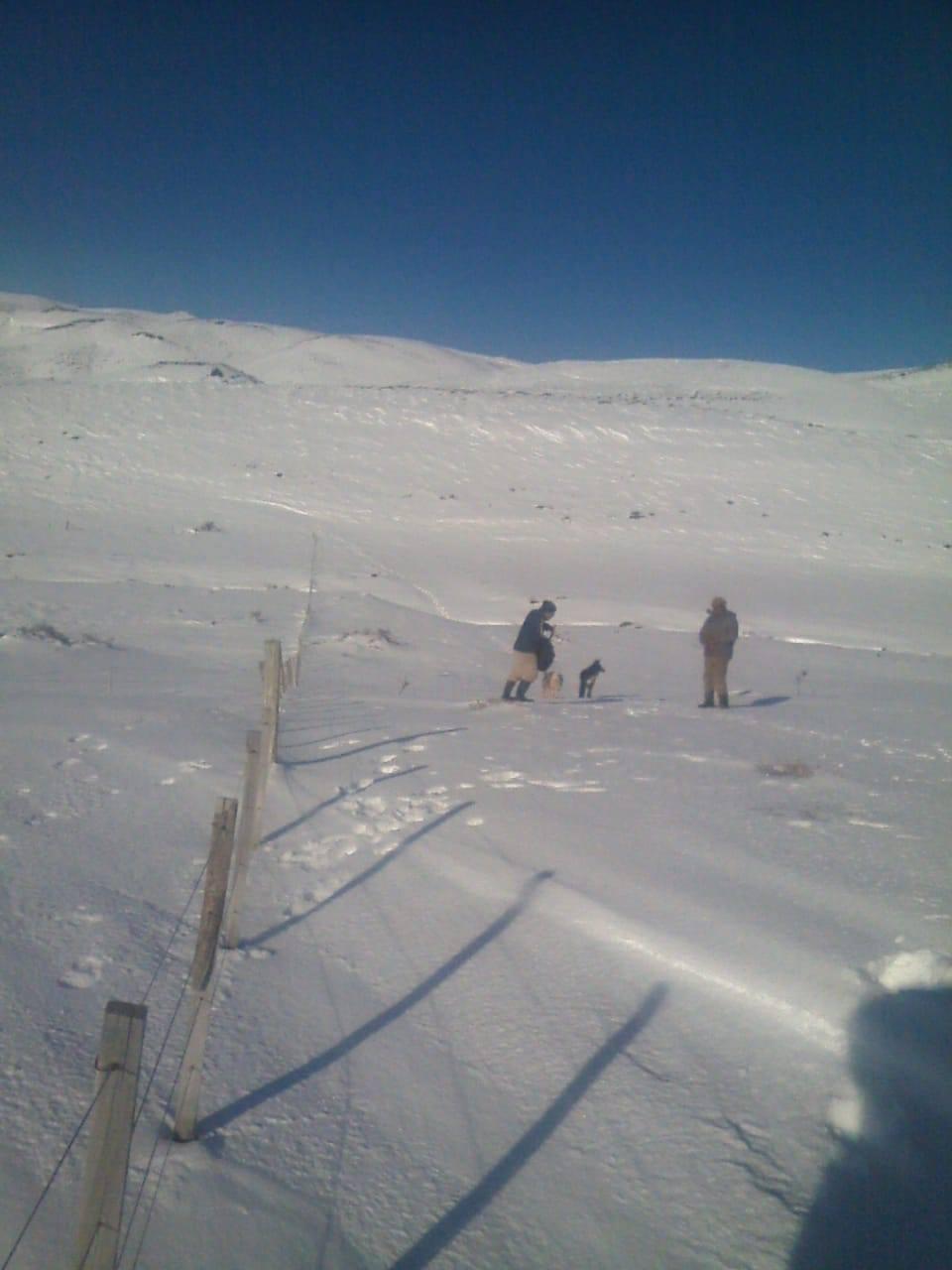Temporal de nieve: Siguen las familias aisladas en Cushamen y Vuelta del Río